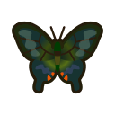NH-Icon-peacockbutterfly