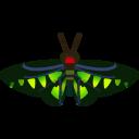 NH-Icon-rajahbrookesbirdwing